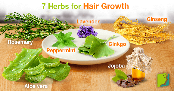 herbs with magic for hair growth